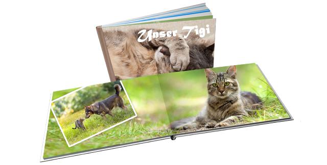 Fotobuch gestalten Haustiere
