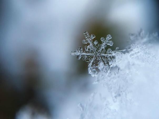 Schneeflocken_fotografieren